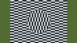 The Minecraft Optical Illusions Map Minecraft Map & Project