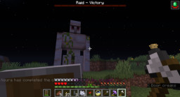 Survival, Entry: #4; Raid Minecraft Blog