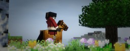 1.13/1.14+ Basic Equestrian Horse Armour Textures Minecraft Texture Pack